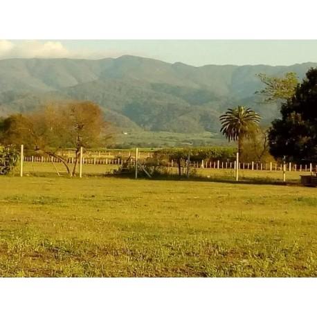 Terrenos en Bario AYRE LOFT
